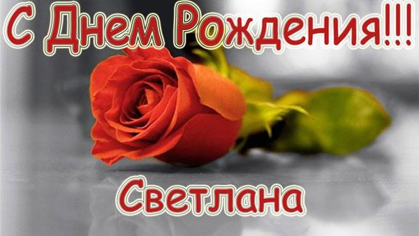 Открытка с розой Светлане с днём рождения