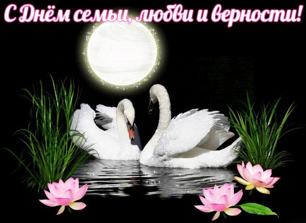 Открытка лебеди под Луной с днём семьи, любви и верности