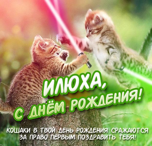 Юмористическая открытка Илюха с днём рождения