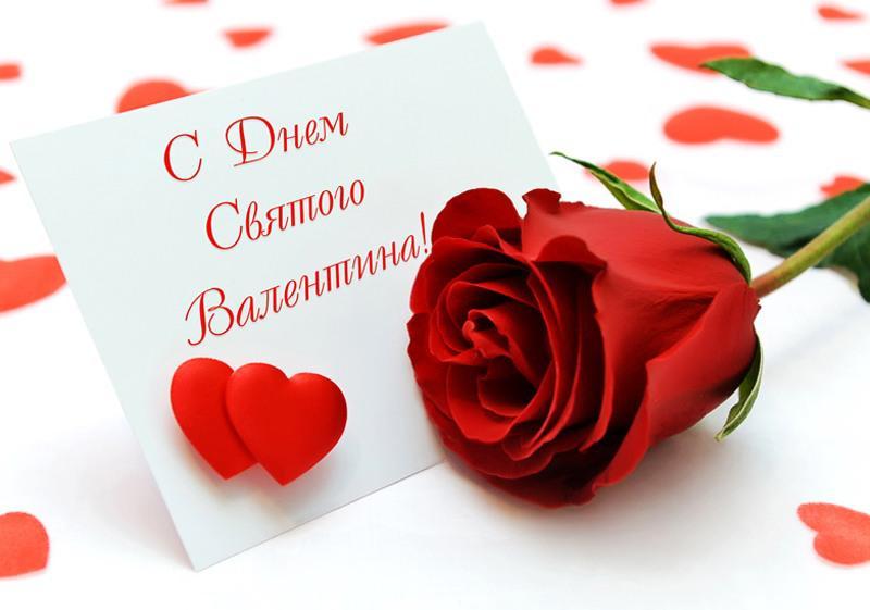 Красивая картинка с розой с Днём Святого Валентина