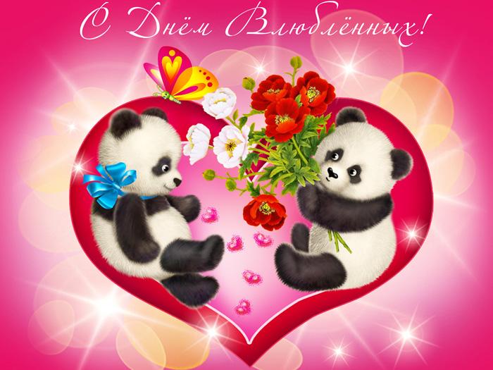 Красочная открытка с пандами с днём влюблённых