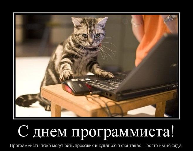 Смешная картинка с днём программиста